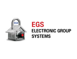 ELECTRONIC GROUP SYSTEMS